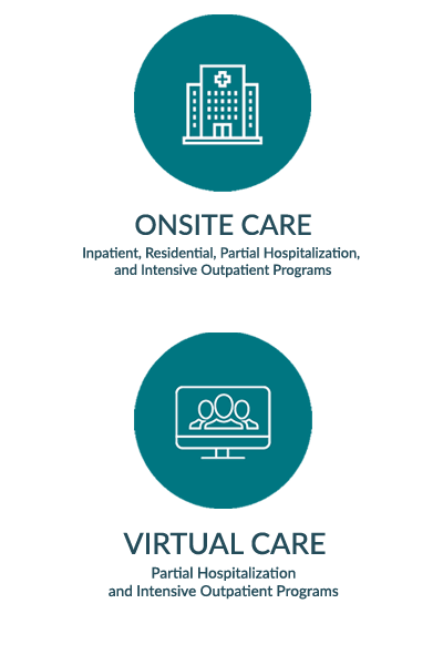 Virtual care program offerings and levels of care
