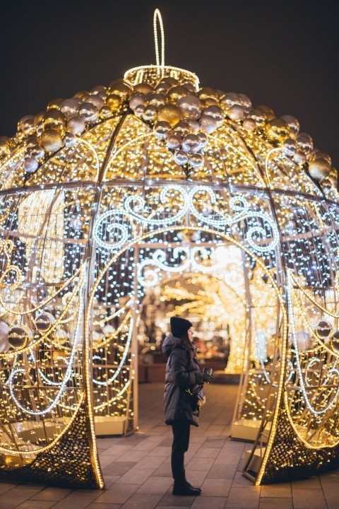 A woman is looking at Christmas lights